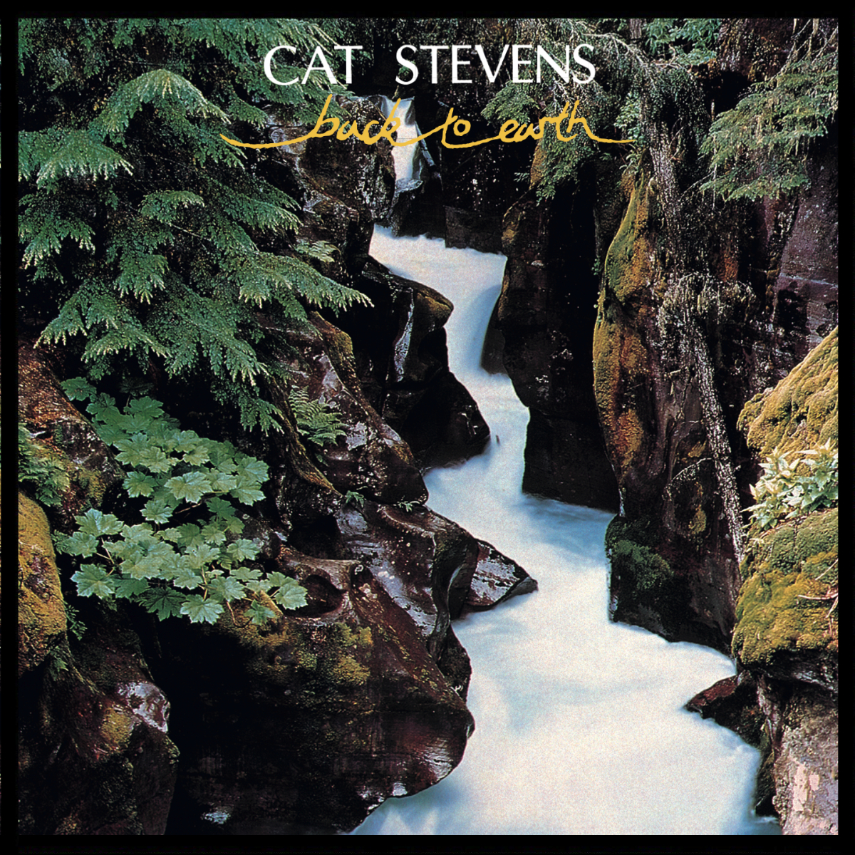 Cat Stevens Back To Earth Lyrics