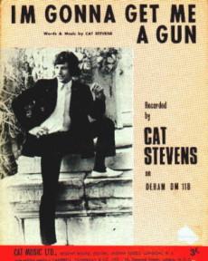 Cat-gun2