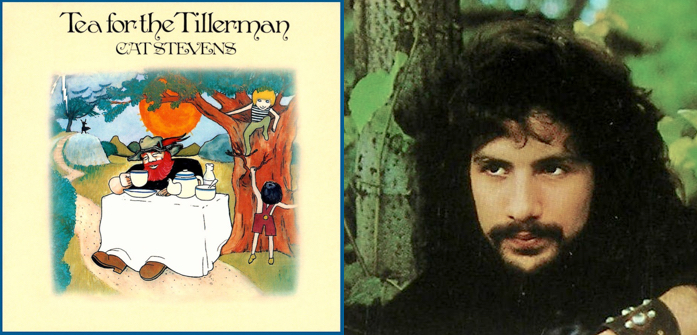tillerman cat