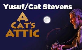 A Cat's Attic Tour On-sale Now