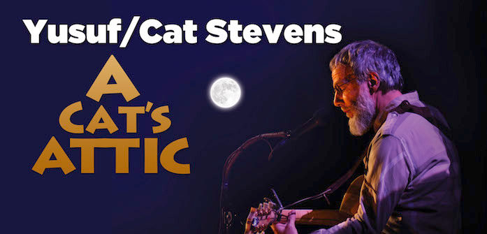 YusufCatStevens_Fall_Color_Graphic_Site_Updated