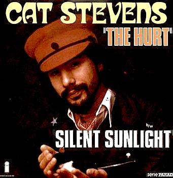 The Hurt / Silent Sunlight (France)